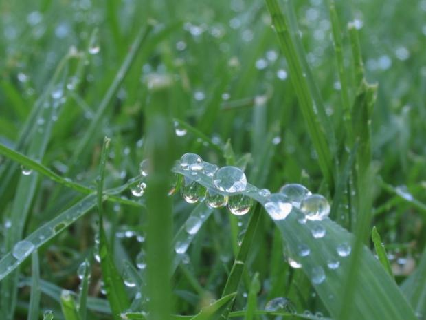 он переполнен романтичной свежестью и парящей лёгкостью тёплого летнего утра, когда с зеленой сочной травы еще не сошли капельки росы. с ним я чуствую себя уверенной и жизнерадостностной, как будто все вершини у моих ног