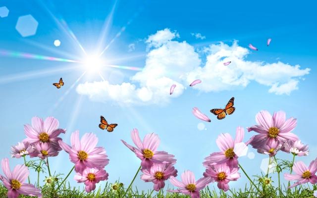 Воздушный, хрустальный, прозрачный, тонкий аромат... Это свежее летнее утро; первые лучи восходящего солнца играют в каплях росы; легкие бабочки порхают над цветочным полем, а Вы попадаете в красивую сказку из детства, где сбываются все Ваши мечты...