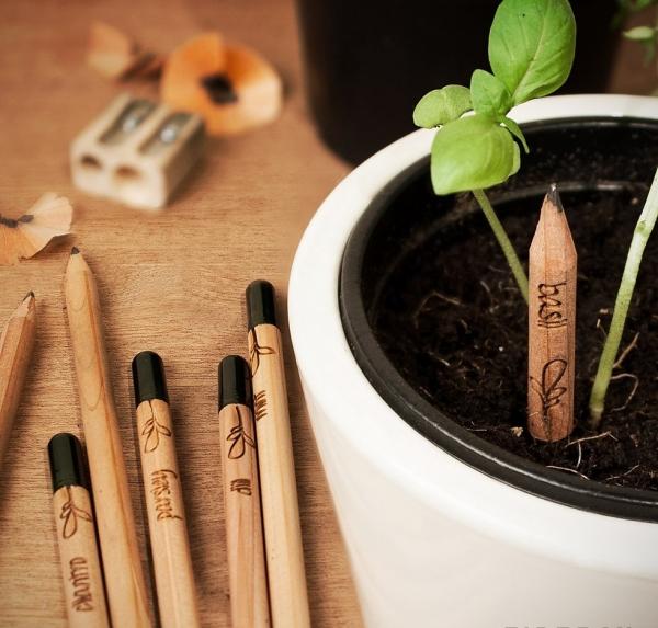 Домашняя оранжерея: выбираем красивые и полезные комнатные растения (очищающие, бактерицидные, увлажняющие) - фото №17