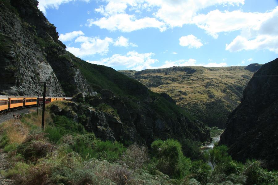 Почему вам стоит поехать в Новую Зеландию - фото №3
