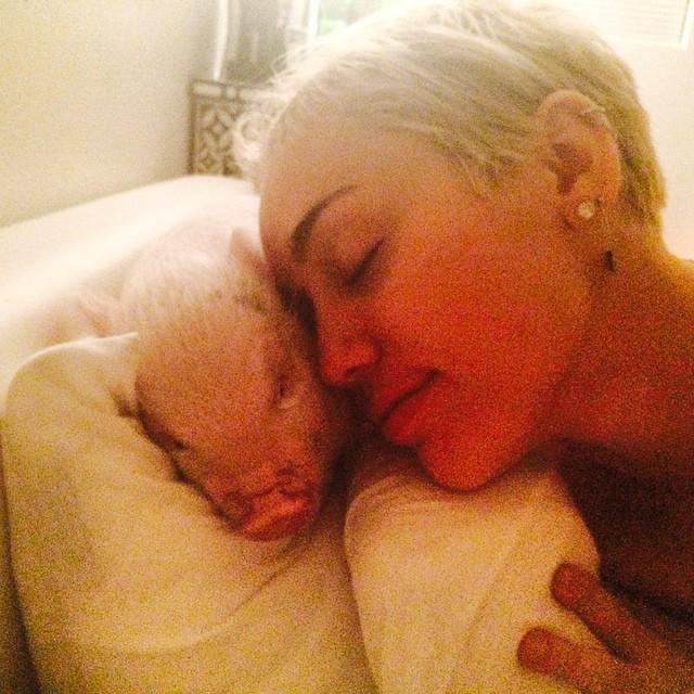 Знаменитости в соцсетях: голая Майли Сайрус, татуировка Ирины Шейк, недавний проект Тимати - фото №3