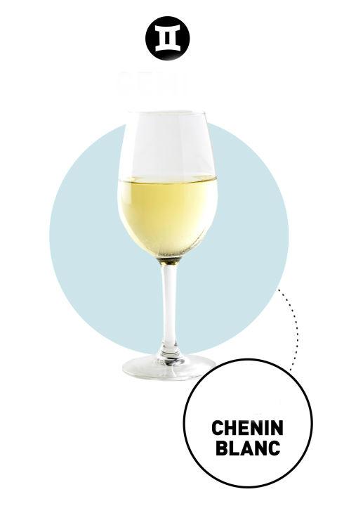 как выбрать вино по знаку зодиака близнецы