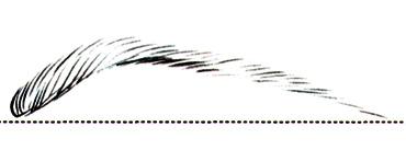 Брови: как найти идеальную форму - фото №7