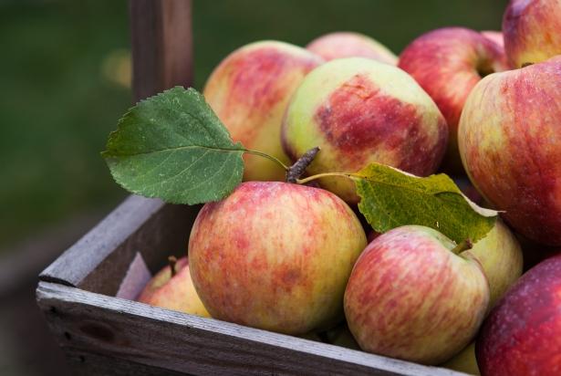 что нельзя делать на яблочный спас 2020