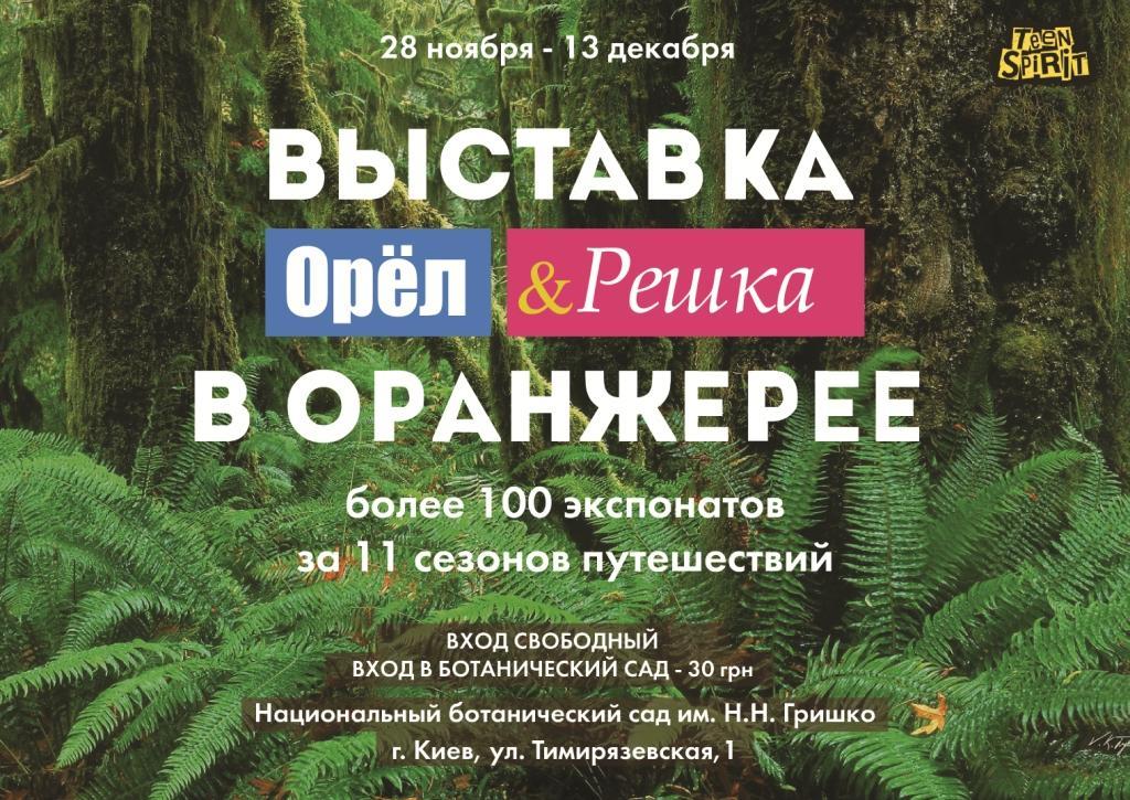Шоу «Орел и решка» открывает в Киеве выставку с экспонатами из путешествий и эффектом тропиков - фото №4
