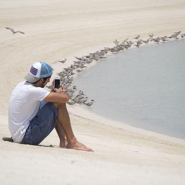 На кого подписаться в Instagram: настоящий наследный принц Дубая - фото №16