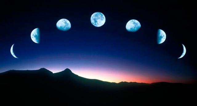 как сажать по лунному календарю