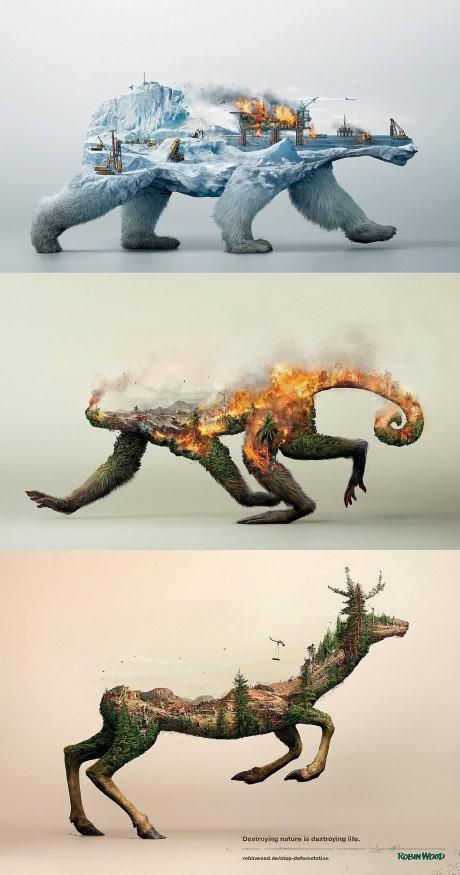 убивая леса мы разрушаем жизнь