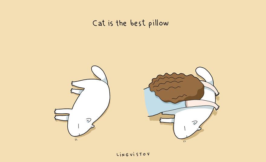 коты смешные картинки