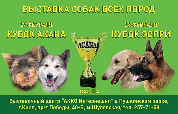 Куда пойти в Киеве на выходных 27-28 февраля выставка собак