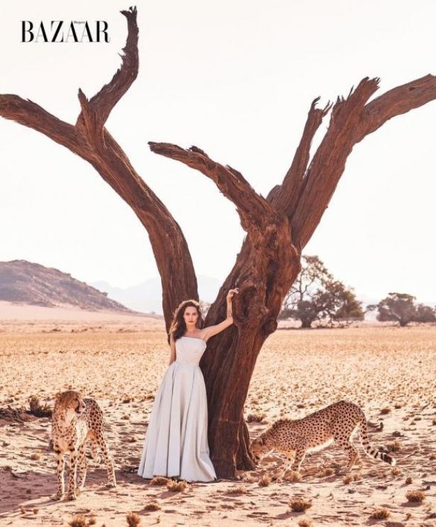 джоли с гепардами фото