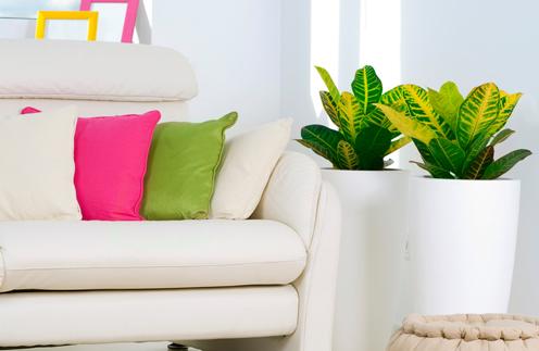 Как сделать уютной съемную квартиру - фото №6