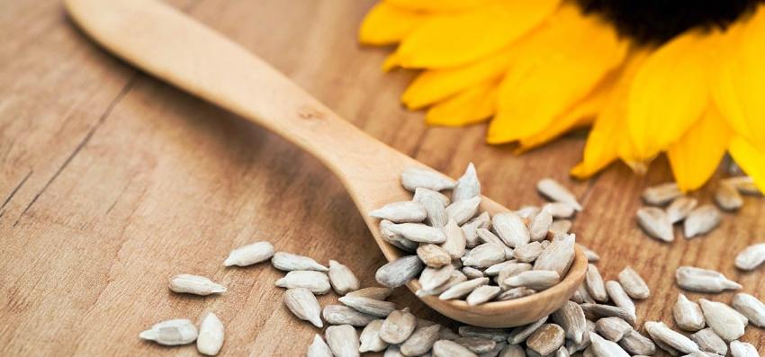 Семена чиа, конопли, подсолнечника – зачем они нужны и как их использовать? - фото №25