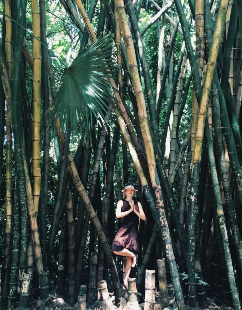 Остров Маврикий: стоит ли лететь больше 10 часов (опыт редакции) - фото №8
