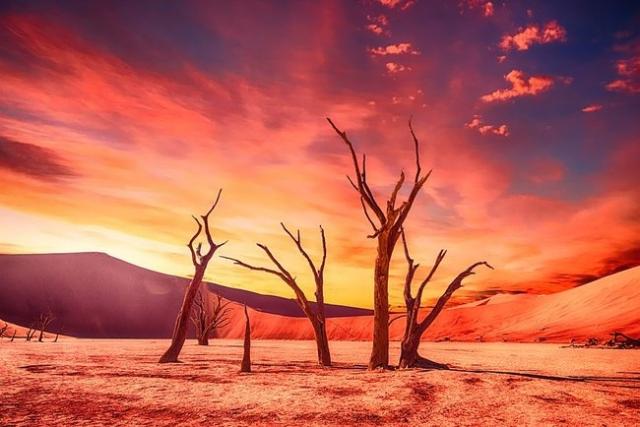 Ученые говорят, что лето станет гораздо длиннее и более жарким - фото №1