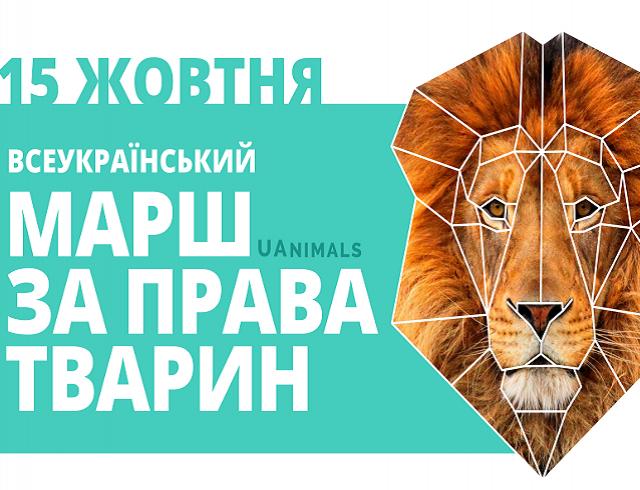 Куда пойти на выходных в Киеве: 14 и 15 октября - фото №1