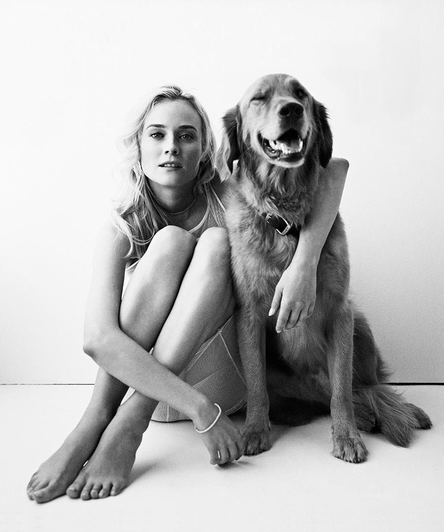 Как правильно выбрать собаку и действительно ли она нужна тебе? - фото №6