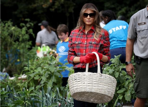 мелания трамп огород