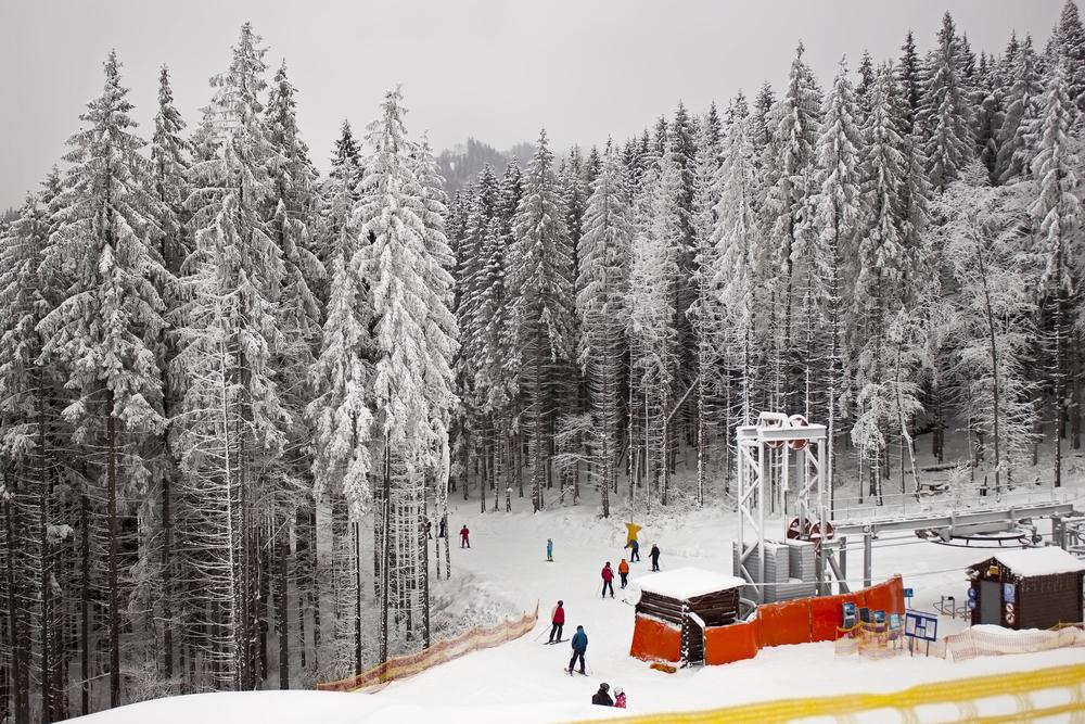 Популярный горнолыжный курорт Буковель: раздолье для любителей зимнего отдыха - фото №6