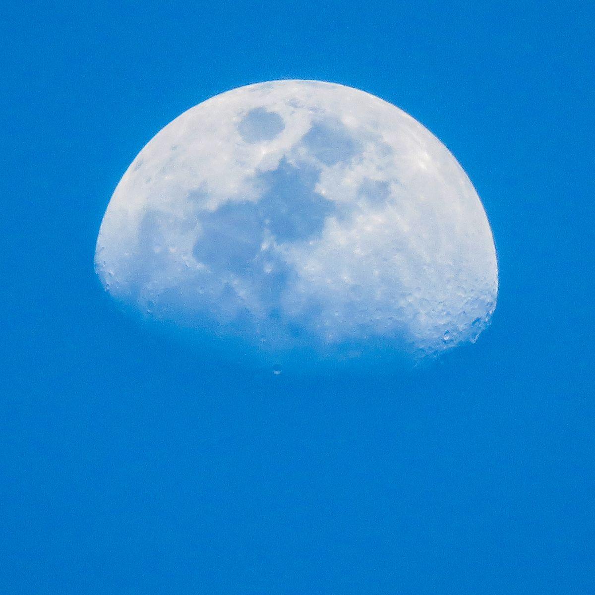 К чему снится луна: что это может значить и чего ждать - фото №1