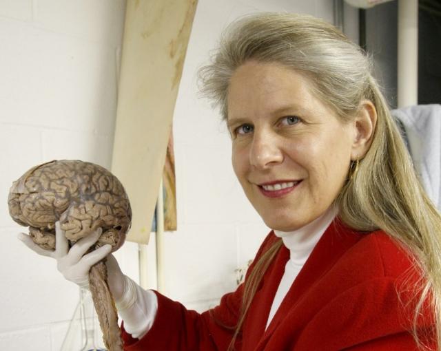 TEDx: почему мы ничего не знаем о важнейшем двигателе нашей жизни – о мозге? (ВИДЕО) - фото №2