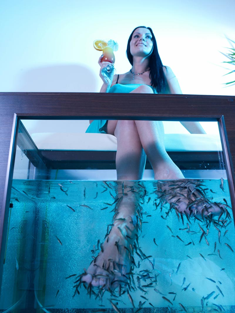Spa-пилинг с помощью рыбок Garra Rufa - фото №2