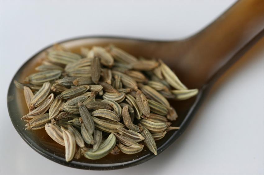Семена чиа, конопли, подсолнечника – зачем они нужны и как их использовать? - фото №12