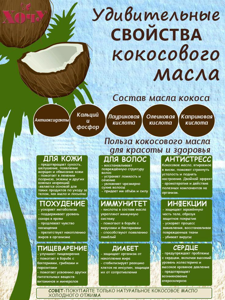 В чем польза кокосового масла. Инфографика - фото №1