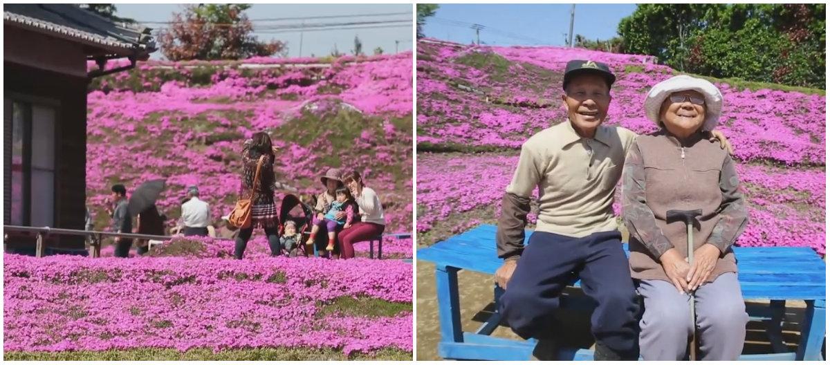 У любви есть запах цветов: мужчина придумал, как вернуть слепой жене смысл жизни - фото №3
