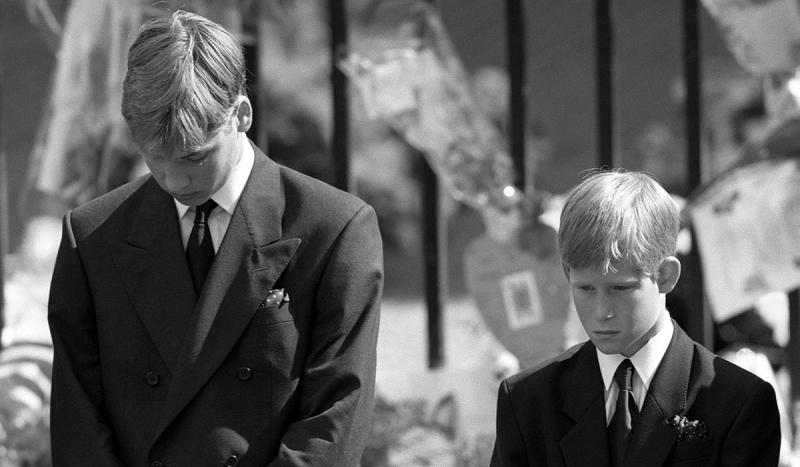 похороны принцессы дианы принцы