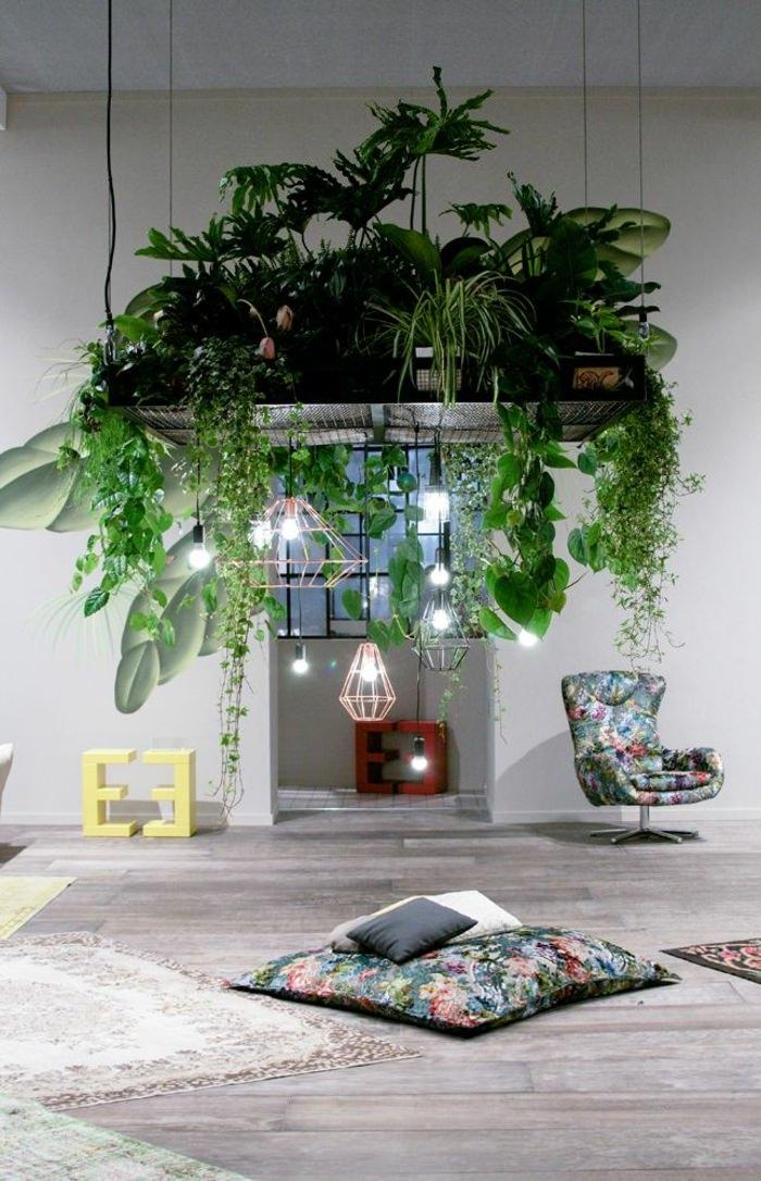 Домашняя оранжерея: выбираем красивые и полезные комнатные растения (очищающие, бактерицидные, увлажняющие) - фото №14