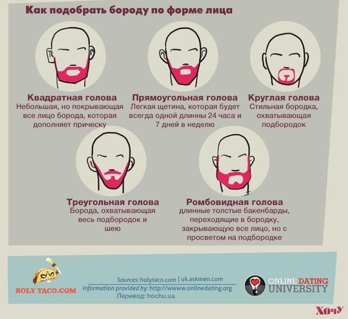 О чем расскажет борода мужчины: ИНФОГРАФИКА - фото №7