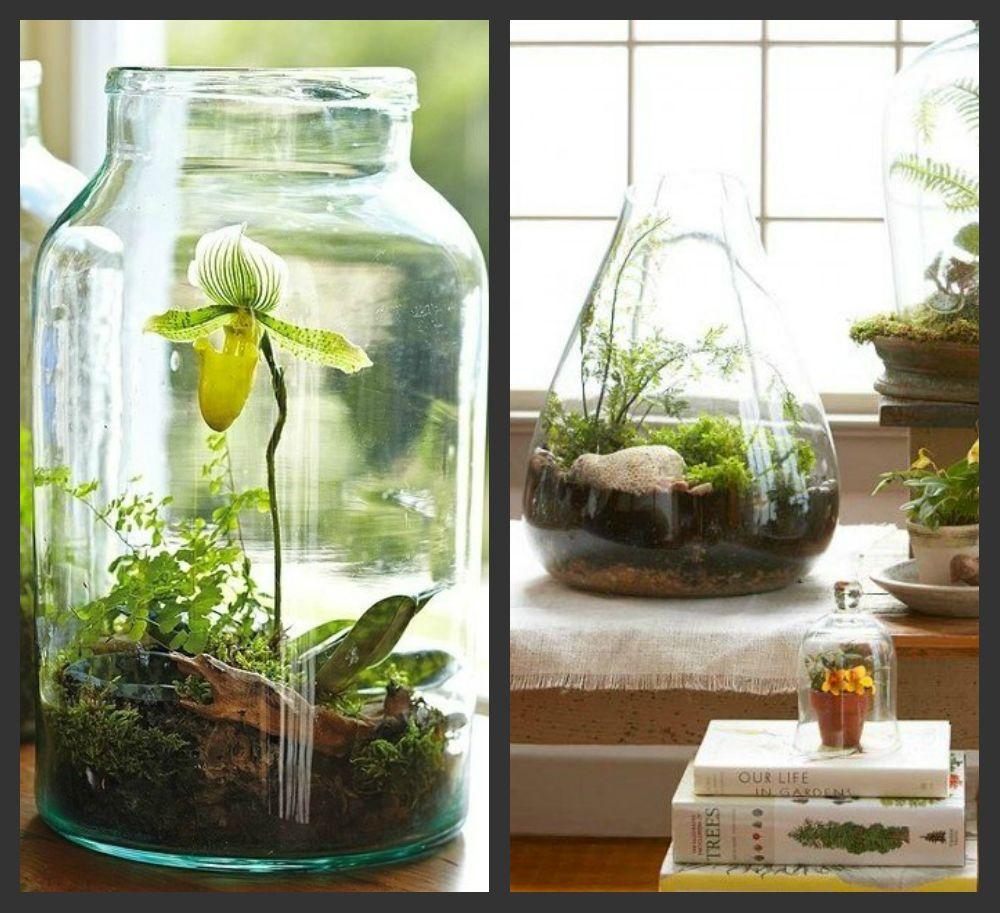 8 способов освежить интерьер с помощью растений - фото №6