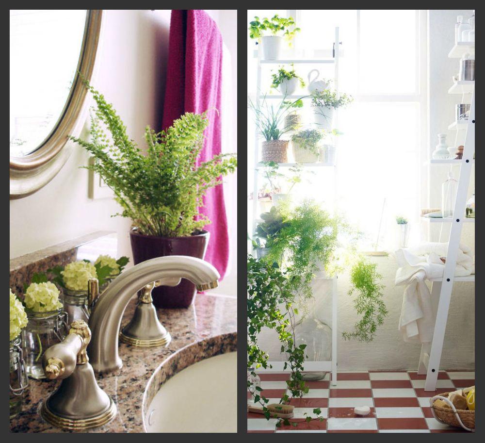 8 способов освежить интерьер с помощью растений - фото №7