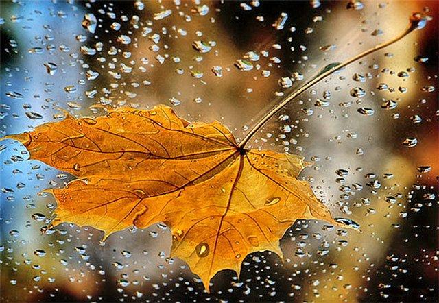 Интересная эзотерика: почему дождлив сентябрь - фото №1