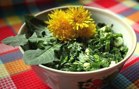 Желтая диета: одуванчики для похудения - фото №2