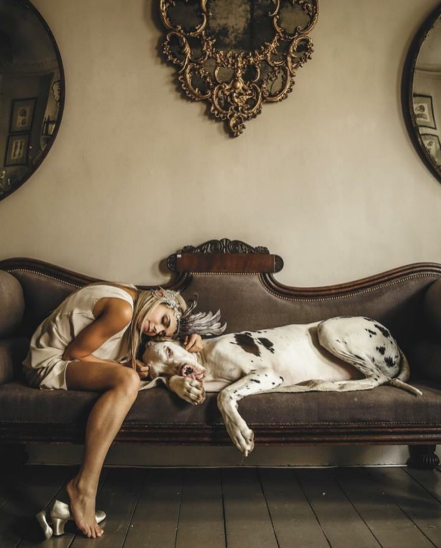 Как правильно выбрать собаку и действительно ли она нужна тебе? - фото №8