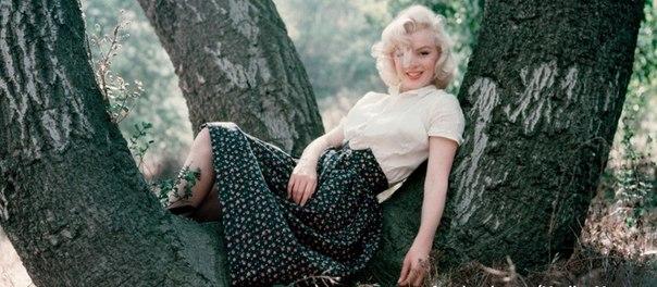 Редкие снимки Мэрилин Монро: взгляд на красоту глазами фотографа актрисы - фото №1