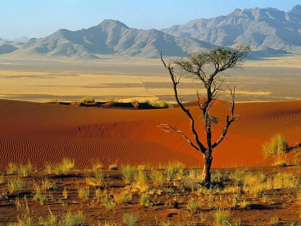 ботсвана пейзажи
