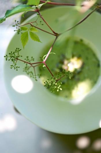 10 летних рецептов от Ники Белоцерковской - фото №5