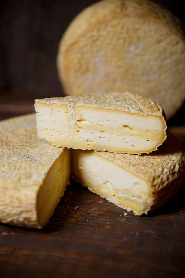 татьяна дядечко сыр