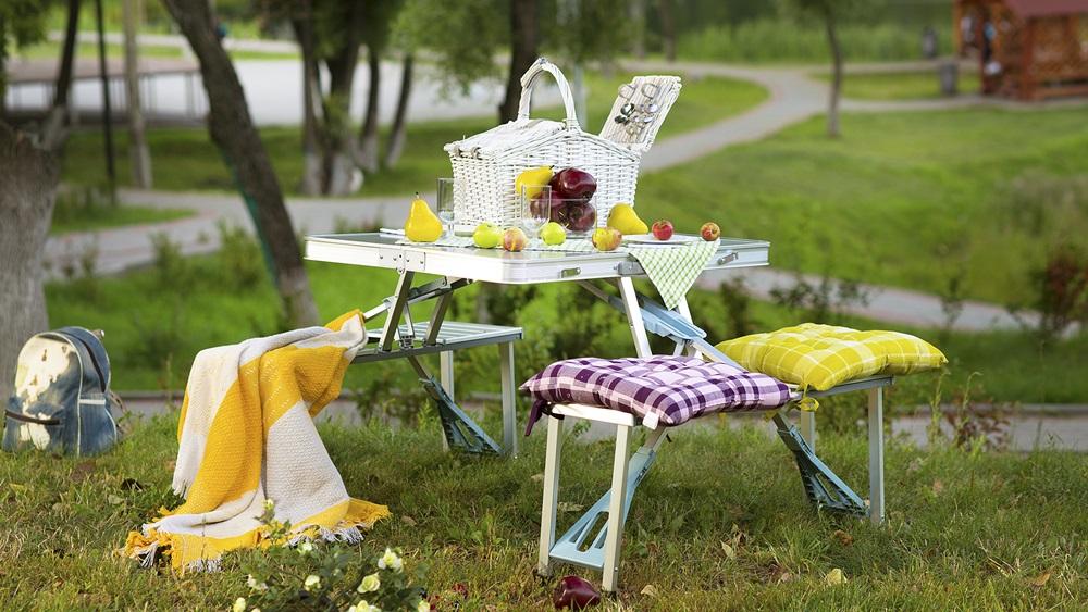как можно устроить пикник