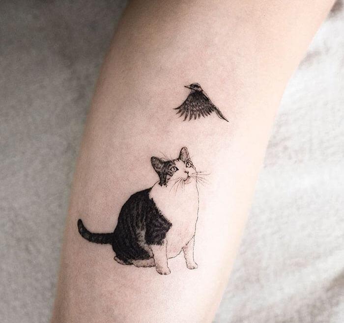 татуировка кошка и птица