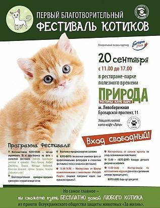Куда пойти 19-20 сентября фестиваль котиков