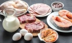 белковая пища фото