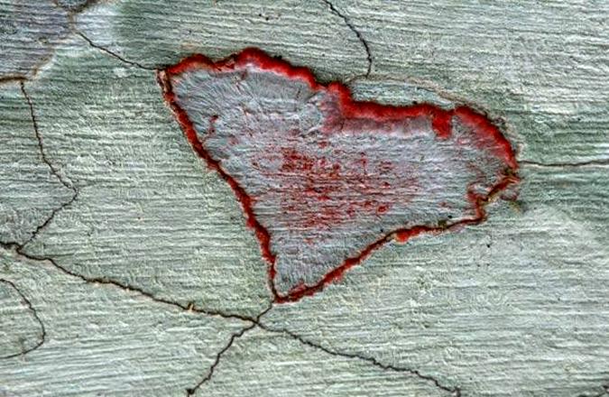 Романтикам на заметку: места на Земле в виде сердца - фото №18