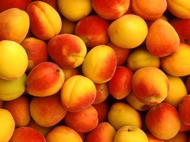 Все, что мы должны знать про абрикос: чем полезен и кому противопоказан - фото №1