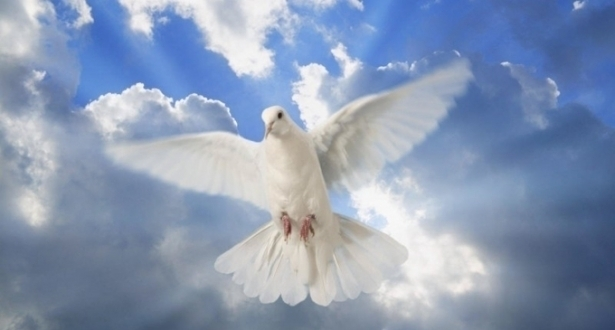 день святого духа поздравления