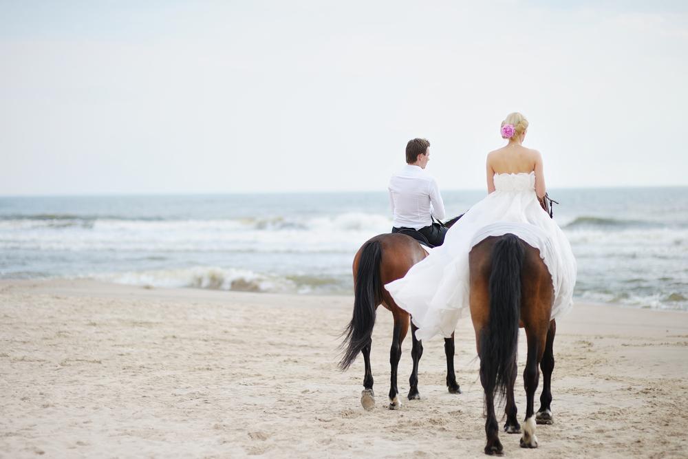 организация свадьбы с чего начать