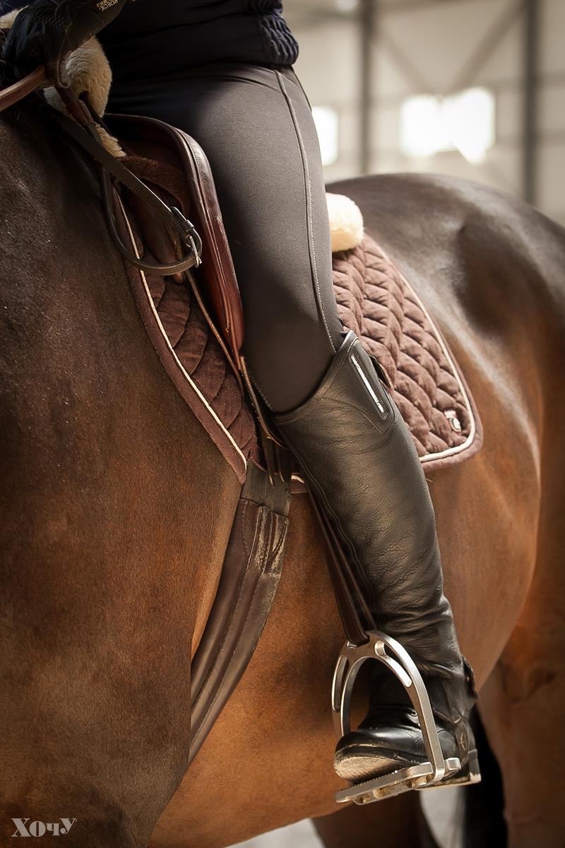 Смотреть секс в конном спорте, войдут ли в щелочку сразу два члена